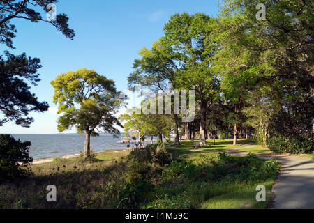 A meandering sidewalk winds through the length of a bayside park in Fairhope, Alabama. - Stock Image