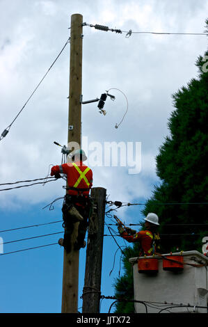 British Columbia Hydro electrical workers replacing electricity power pole - Stock Image