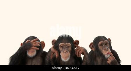 blah blah blah - Stock Image