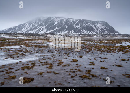 Landscape along the southern coast of Iceland at wintertime - Stock Image