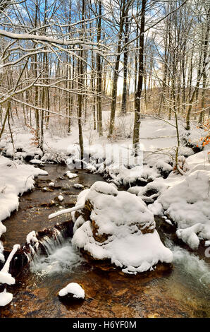 Stream in the snowy natural park in winter - Stock Image