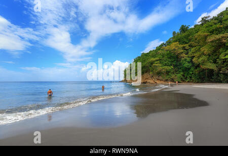 Black Sand beach in Martinique, Caribbean. Anse Couleuvre, Le Precheur Region, near Motagne Pelee. People in water looking to turtles. - Stock Image