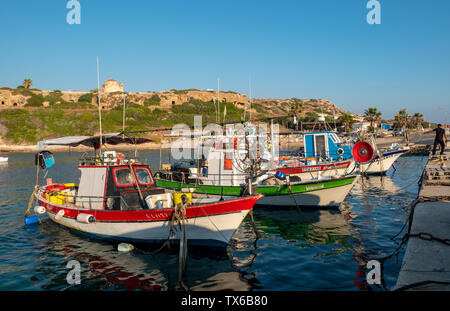 Fishing boats moored in Agios Georgios Harbour, Peyia district, Cyprus. - Stock Image