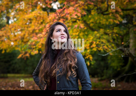 pretty, young long lady in her 20s, with long brown hair, enjoying autumn in the woodlands, Gloucestershire, Cotswolds, - Stock Image