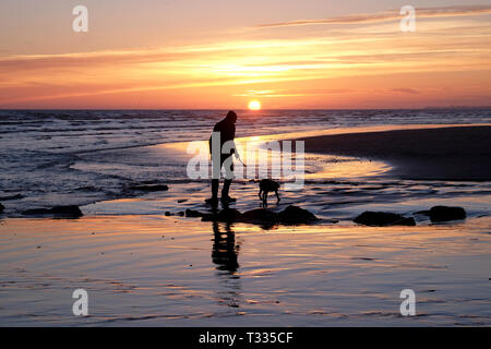 A solitary unrecognizable man walking with his dog on a lead on a deserted sandy beach, both him and the dog have their back to the camera and are wal - Stock Image