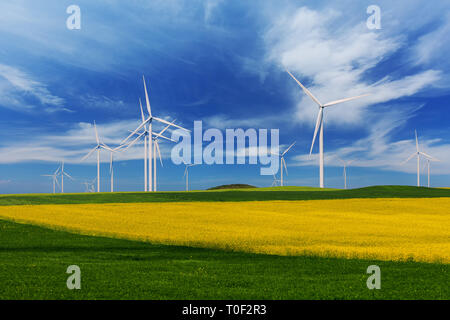 Rapeseed field with wind turbines against a deep blue sky - Stock Image