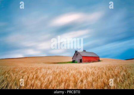 Barn in wheat field with approaching storm clouds. The Palouse, Washington - Stock Image