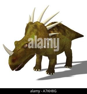 Styracosaurus  dinosaur - Stock Image
