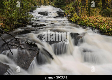 Small mountain river in Vindelfjällen nature reserve, Kungsleden trail, Lapland, Sweden - Stock Image