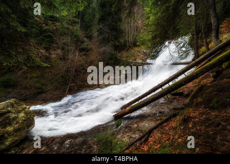 landscape with mountains, forest and a river in front. beautiful spring scenery - Stock Image