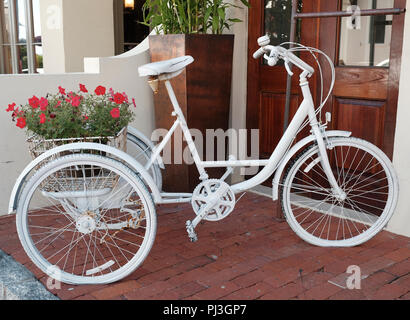 Decorative white bicycle with a basket full of red flowers on display in Florida, USA. - Stock Image