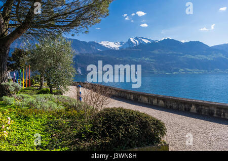 View of Lake Lucerne (Vierwaldstättersee) and the Swiss Alps from the waterfront park of Gersau, Switzerland, - Stock Image