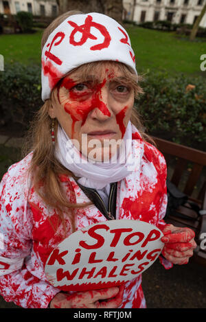 London, UK. 26th January 2019. London protest against the intended resumption of whaling by Japan.The Japanese government recently backed out of an international agreement banning commercial whaling. Campaigners rally at Cavendish Square for the march to the Japanese Embassy. Woman wearing red blood spattered clothing holding Stop Killing Whales sign.  Credit: Stephen Bell/Alamy Live News. - Stock Image