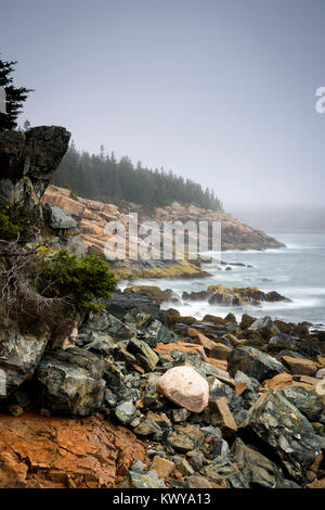 Foggy morning and rocky shoreline of Western Point in Acadia National Park. - Stock Image