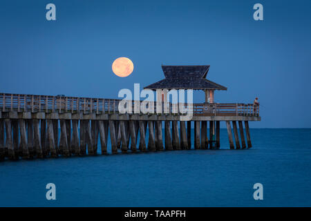Setting Full Moon and Early morning twilight over the Naples Pier, Naples, Florida, USA - Stock Image