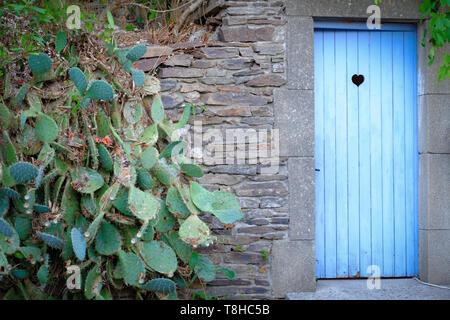 Vintage blue wooden toilet door - Stock Image