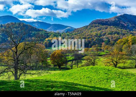 Cumbrian landscape near Elterwater, Lake District National Park, Cumbria, England, UK, Europe. - Stock Image