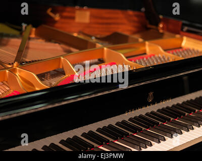 Detail photo of Steinway Grand D concert grand piano  Hamburg version. Hasselblad high resolution digital mid format - Stock Image
