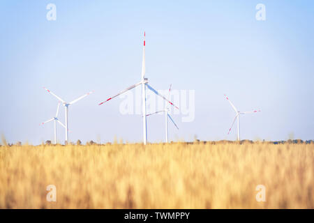 Wind power plant in the golden wheat field. Bright summer landscape - Stock Image