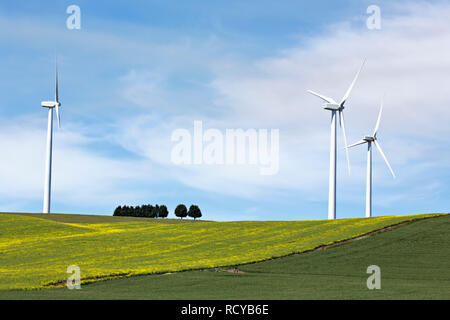 The Acconia owned and operated Wind Turbine Farm in Waubra Victoria Australia.Consisting of 128 turbines that each produce 1.5 megawatts, and is the l - Stock Image