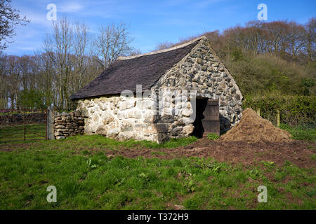 Stone byre or cowshed, St Fagans National Museum of History, Cardiff, South Wales - Stock Image