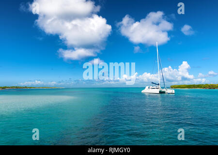 Catamaran mooring near Petite terre, Guadeloupe, French West Indies, blue sky background - Stock Image