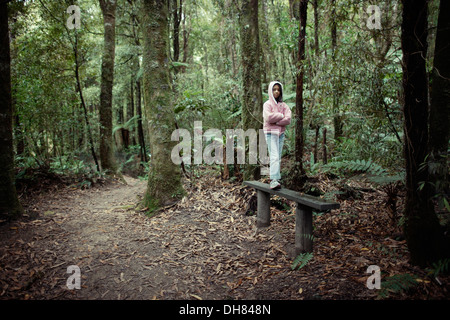 Girl stands on bench in native forest, New Zealand. - Stock Image