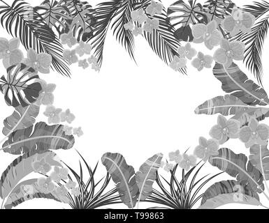 Tropical leaves of banana, coconut, monstera and ogawa, pink orchid in black and white version. Place for advertising, advertising. illustration - Stock Image