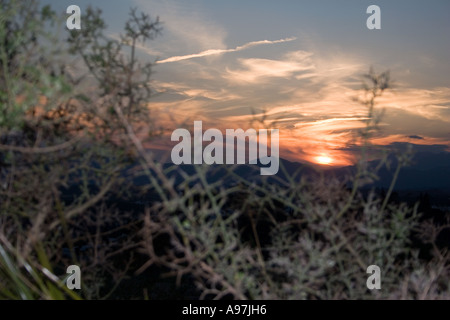 Sunset in hills above Fuengirola, Spain, evening sunlight dusk Sierra Blanca country side countryside rural rustic campo scene - Stock Image
