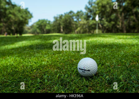 Golf ball on the course, flag in frame - Stock Image