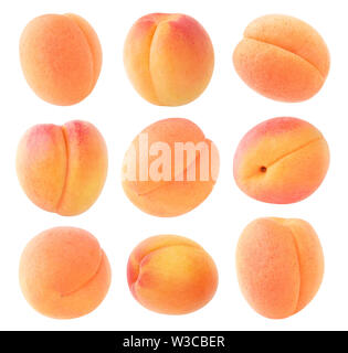 Isolated apricots. Collection of fresh apricot fruits of diferent shapes isolated on white background with clipping path - Stock Image