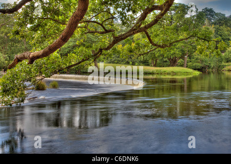 The Horseshoe Falls a picturesque semicircular weir which feeds the Llangollen canal, Wales. - Stock Image