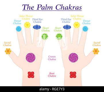 Palm chakras. Symbols and names of the main chakras at the corresponding parts of both hands - illustration on white background. - Stock Image