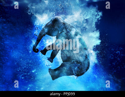elephant jumping in water - Stock Image