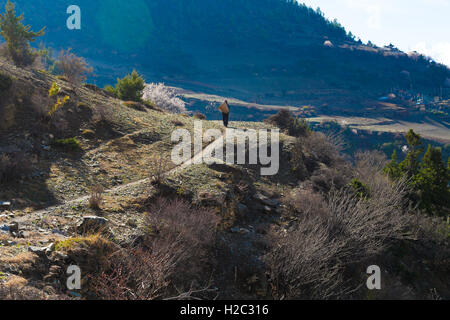 Nepalese Sherpa Hiking Mountain Trail Village Path.Young Man Climbing Loaded Bags Track Traveler Beautiful Noth - Stock Image