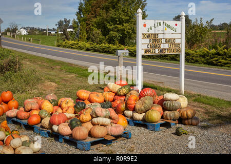 Produce Market Sign, Pennsylvania Dutch Country, Lancaster County, Pennsylvania, USA, - Stock Image