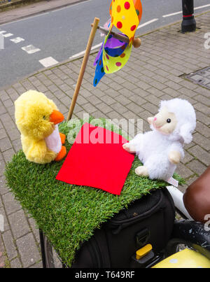Chick and lamb cuddly toy's sat on grass patch at rear of bicycle - Stock Image