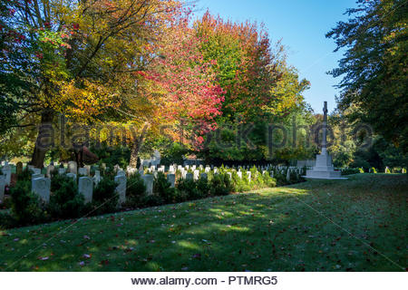 Bramshott, Hampshire, UK. 10th October 2018. UK Weather: Autumn colour on the maple trees, planted in memory of over 300 Canadian soldiers interred in the cemetery of St. Mary the Virgin, Bramshott. The troops were stationed nearby, but many died not as a result of the fighting, but of Spanish Influenza which struck in the autumn of 1918 as WWI came to an end. Credit: Images by Russell/Alamy Live News - Stock Image