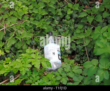 A discarded plastic bottle by a public footpath by the River Bure at Horstead, Norfolk, England, United Kingdom, Europe. - Stock Image