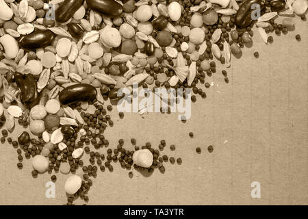 Mixed dry seeds cleared area - Stock Image