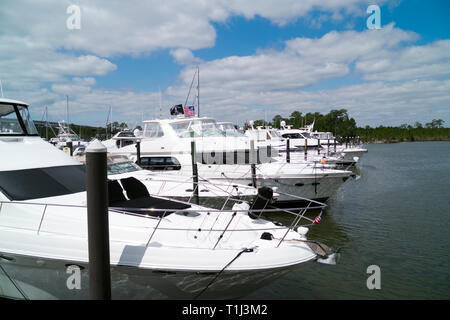Expensive upscale yachts at dock along the pier at The Wharf Marina in Orange Beach, Alabama, USA. - Stock Image