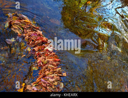 High dynamic range (HDR) image of autumn leaves and vibrant colors reflected in swirling water. - Stock Image