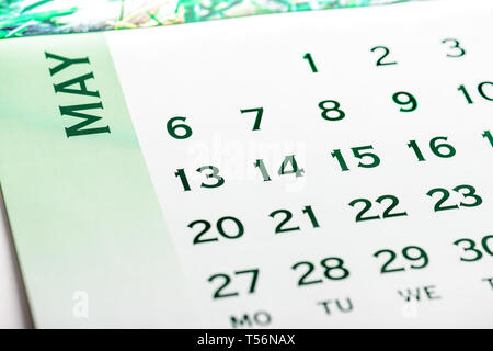 Top view May calendar page. Green tone - Stock Image