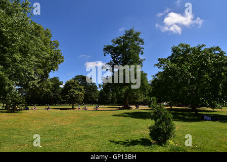 Summer in Hyde Park - Stock Image