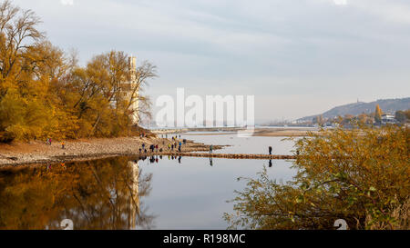 Rhine near Bingen with low water. November 6th 2018. - Stock Image