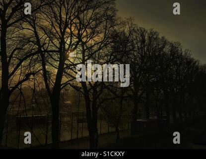 Early spring morning - Stock Image