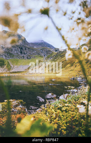 Spring landscape mountains and lake with flowers plant framing spring Landscape Travel outdoor view nature - Stock Image