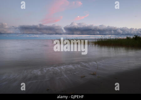Evening Landscape in Valgerand 11th August 2016, Estonia - Stock Image