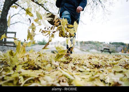 Man kicking fallen leaves, low section - Stock Image