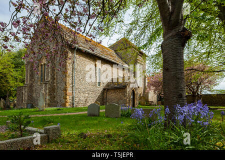 Spring morning at the Saxon church of St Julian's in Shoreham-by-Sea, West Sussex, England. - Stock Image